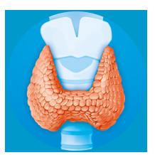 Glanda tiroidă mărită în dimensiuni